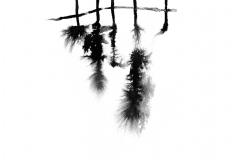 Black-ink-weave12