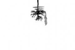 Black-ink-weave5