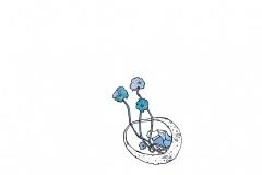 1_Pebbles-plants-and-dumplings23