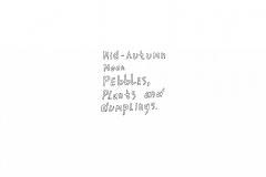 1_Pebbles-plants-and-dumplings3