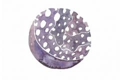 Moon-Song-Meditations23