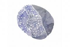 Moon-Song-Meditations3