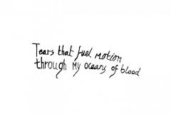 Oceans-of-blood2