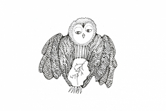 Owls-egg-2
