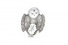 Owls-egg-3b
